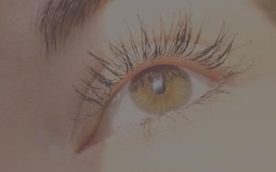 Wimpern – Vitalität und Anziehungskraft